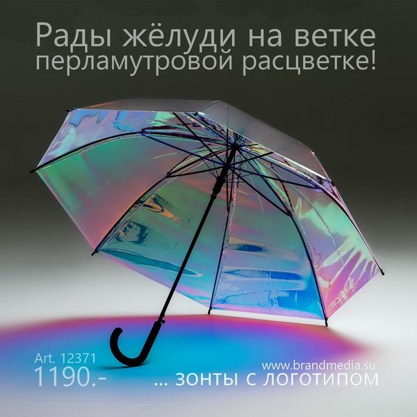 Новинка: прозрачные зонты-трости