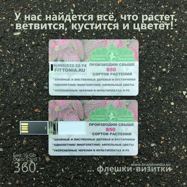 Флешка визитка Color Card 1