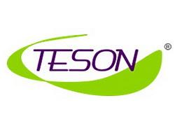 Компания Teson