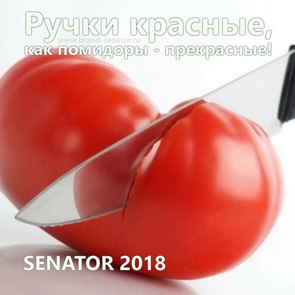 Красные ручки Senator с логотипом фирмы заказчика