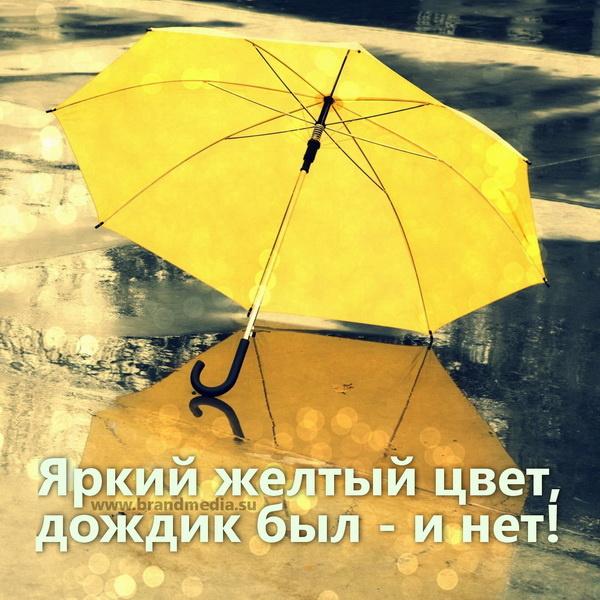 Желтые зонты с логотипом компании