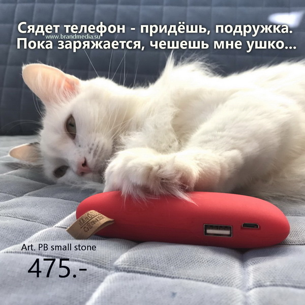 Зарядные устройства оптом купить в интернет-магазине