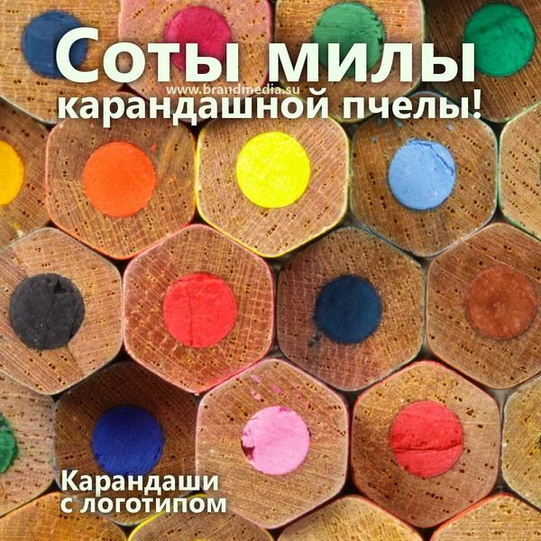 Цветные карандаши с логотипом компании